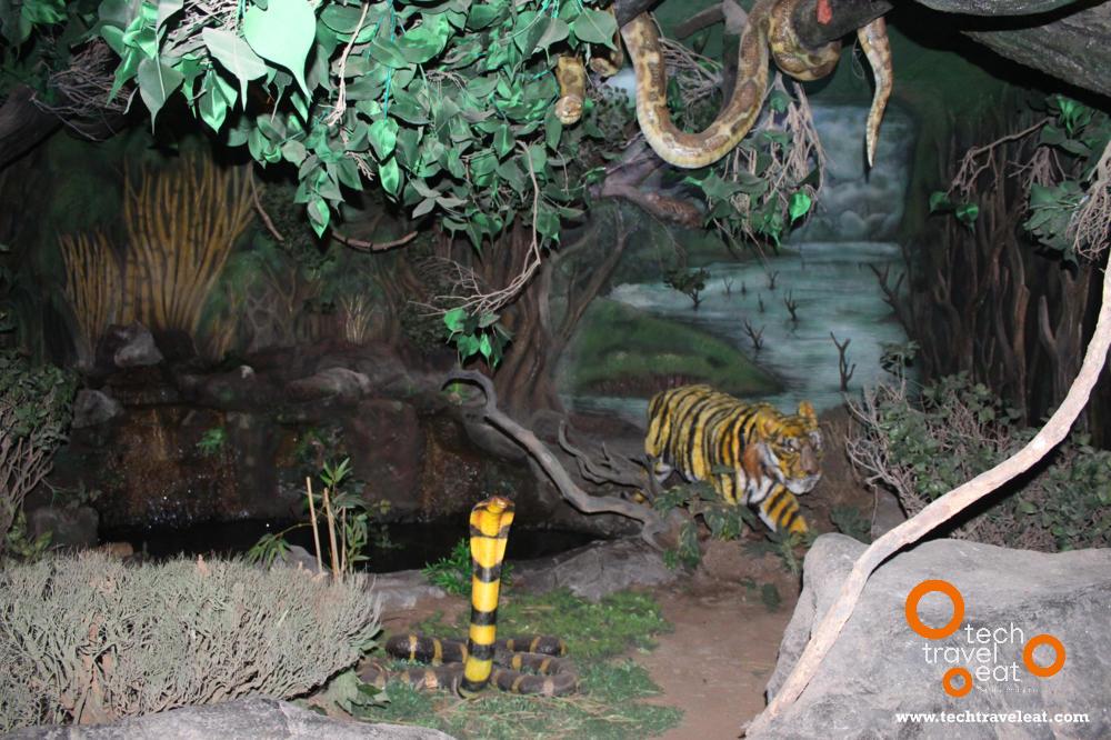 periyar-tiger-reserve-interpretation-centre8
