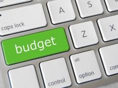 IT Budget