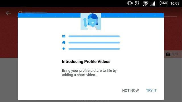 profile videos