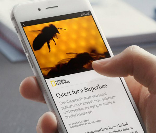 instant articles AMP