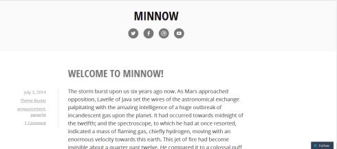Minnow desktop view