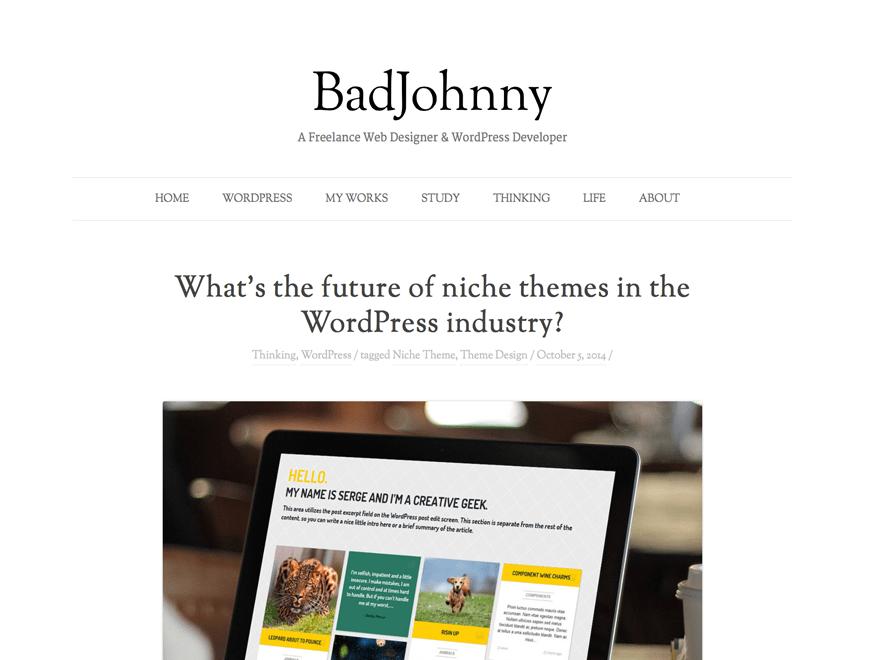 Minimalist WordPress Themes BadJohnny   Wonders Lite   Zoomify