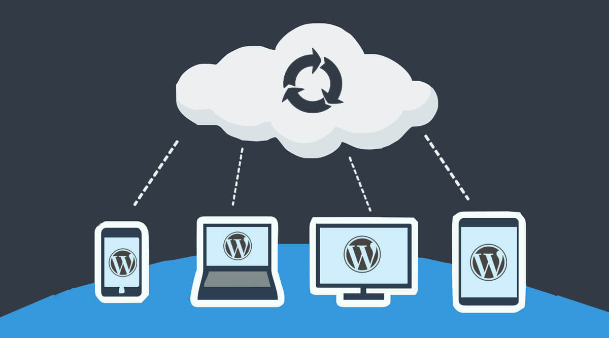 https://www.proteusthemes.com/wp-content/uploads/2016/11/auto-wordpress-backup-header.jpg