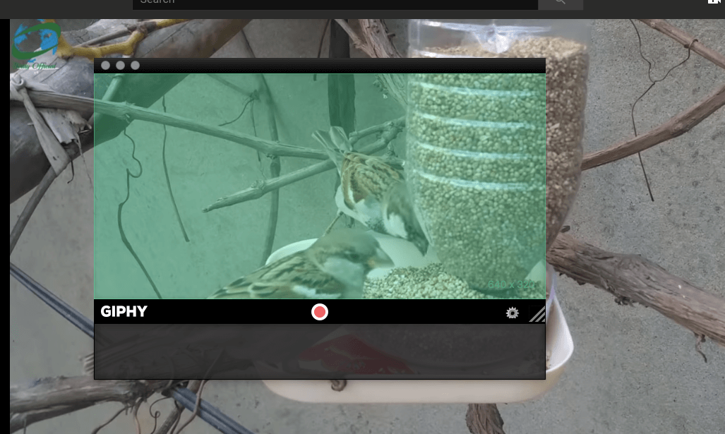 Best Free GIF Maker Apps for Mac OS, Macbook Air, Pro 2019 - TECHWIBE