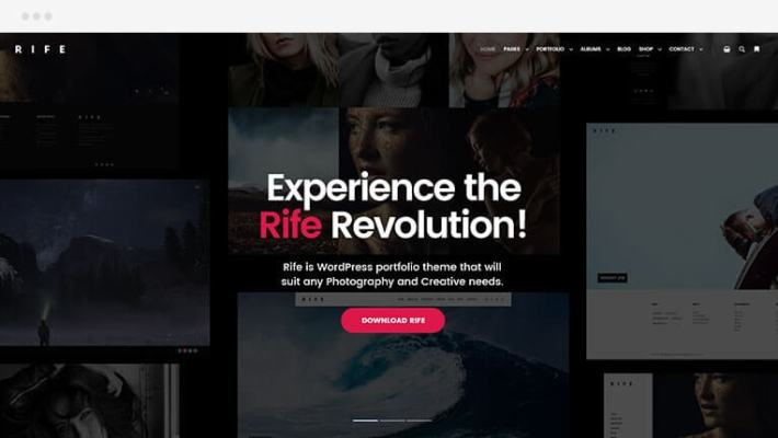rife free wp theme