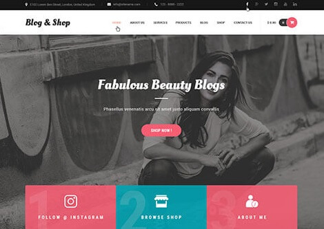 blog and shop