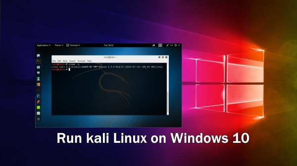 Run kali Linux on Windows 10 in Docker » TechWorm