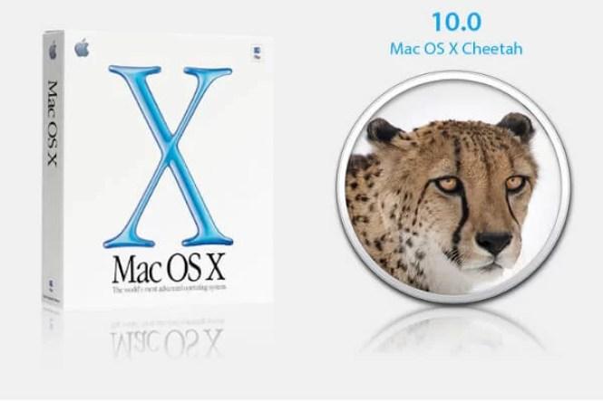 Version 10.0 Cheetah