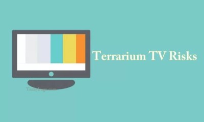 Terrarium TV Risks