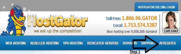 Hostgator Signup 1