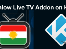 How to Install Halow Live TV Kodi Addon Using Halow Repo