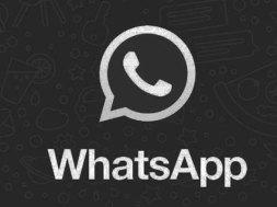 369286_439845_updates