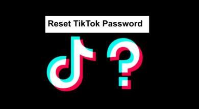 Reset TikTok Password