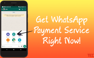 Get WhatsApp Payment Feature