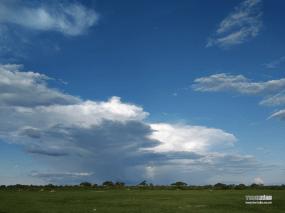 Landscape taken by a ZTE AXON PRO