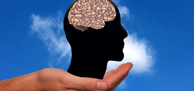 Translators Use Multiple Cognitive Functions At The Same Time