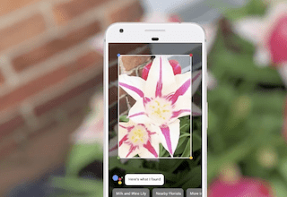 Photo of Google Lens updated with smart text selection and real-time lookup