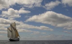 Tecla sailing