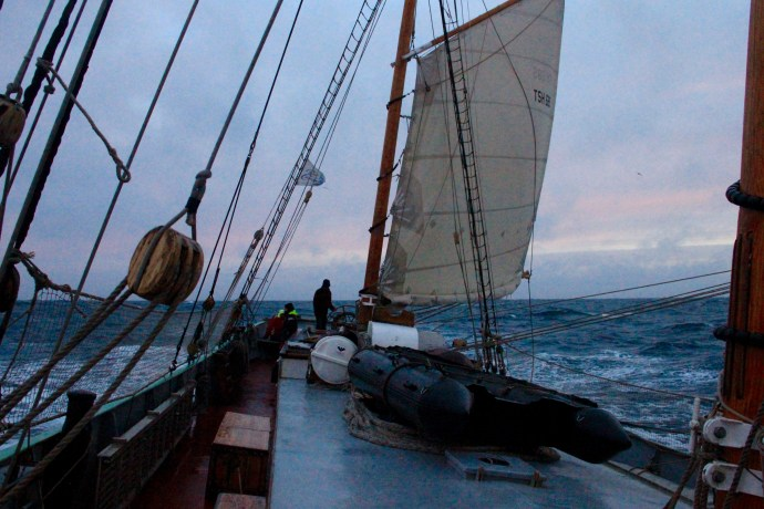 Tecla under reefed sail in morning sunrise