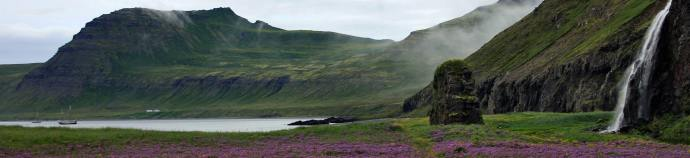 waterfalls and purple flowers