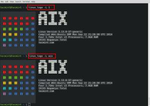 Print AIX Logo