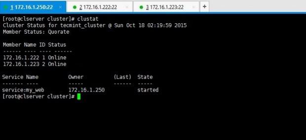 Check Cluster Status