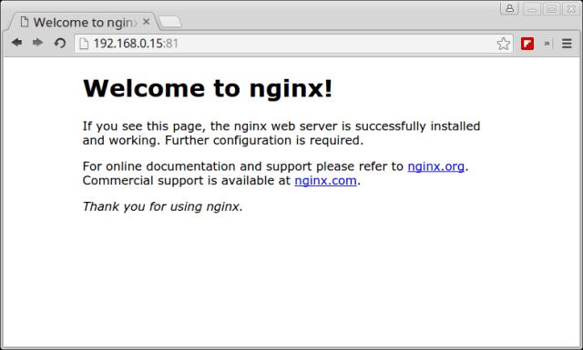 Verify Nginx Running under Docker Container