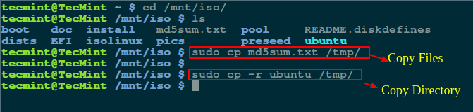 Copy Files From ISO File in Linux