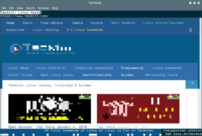 Browsh Web Browsing