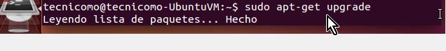 Ejecutando el comando upgrade en cómo instalar los Guest Additions de VirtualBox en Ubuntu