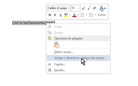 Menú para activar los campos de la fórmula en cómo colocar una raya encima del texto en Word 2013