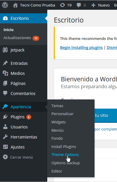 Theme Options en cómo personalizar las opciones generales del tema FreshLife de WordPress