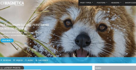 Plantilla Magnetica en temas premium de WordPress disponibles en español