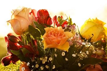 Comprando y enviando flores con el servicio de Arena Flowers