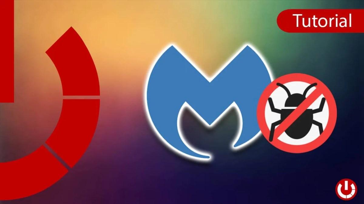 Come scaricare MalwareBytes gratis Windows e Mac