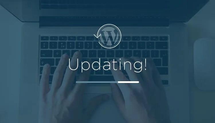 Aggiornare WordPress, Temi e Plugin