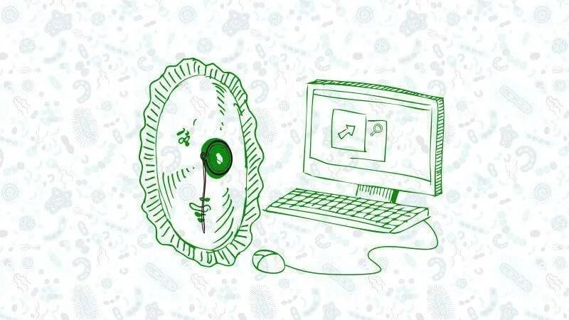 reloj ordenador dibujo