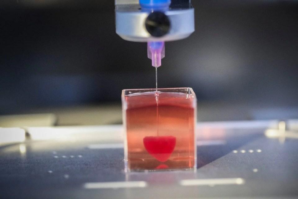 Así se hacen los órganos y prótesis creados con impresión 3D