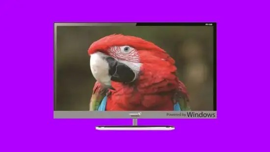 tv-windows-10