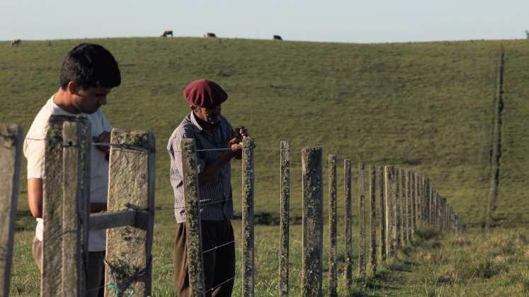 Cinema Latino filmes brasileiros são destaque no 12º festival de cinema latino-americano de são paulo