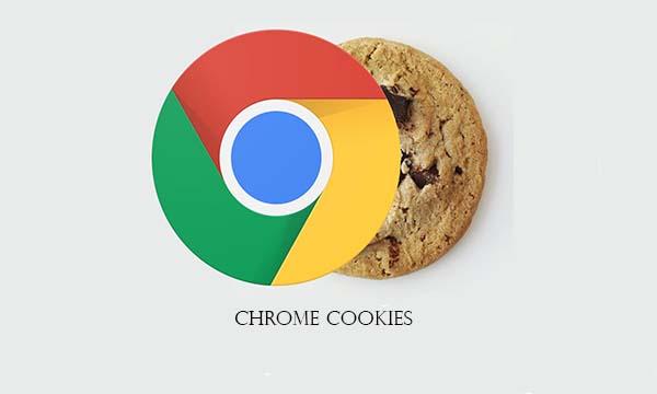 Chrome Cookies