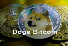 Doge Bitcoin - Knowing the Difference Between Bitcoin and Dogecoin