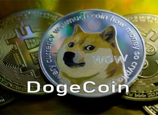 Dogecoin - Introducing Dogecoin Digital Cryptocurrency