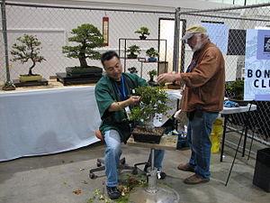English: Maker Faire Bonsai booth