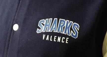 Teddy Budget Sharks Valence