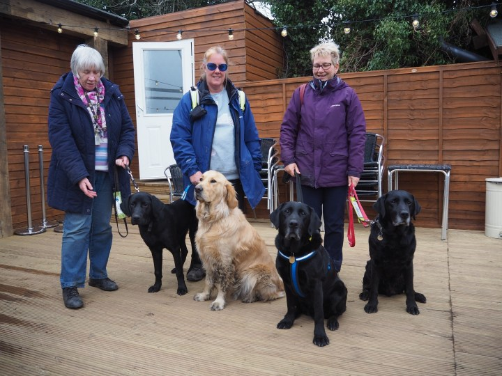 L to R Hoomans - Irene, Ma and Brenda with dogs Little Teddy, Big Teddy, Oakley and Dixon all sitting on wooden decking outside Cafe