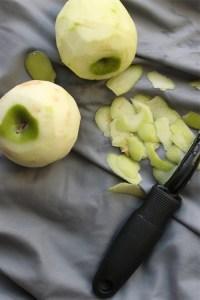doggie doughnut shredded apples