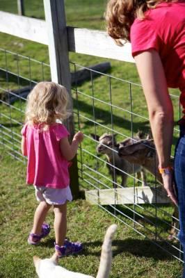 Post Family Farm 2013