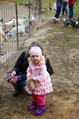 Leah still enjoying herself feeding the goats.