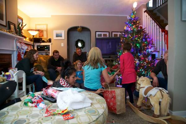 Vogel Christmas 2013